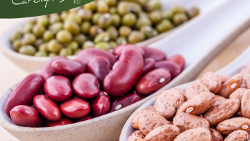 High Protein Beans are Inexpensive